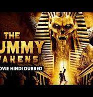 The Mummy Awaknes
