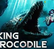King Crocodile