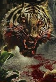 Attack Of The Tiger